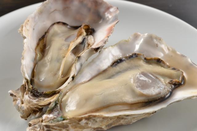 髪を生やす食材・牡蠣