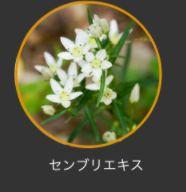 リデン・成分02