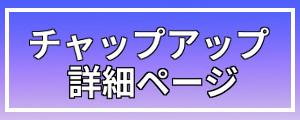 詳細・チャップアップ