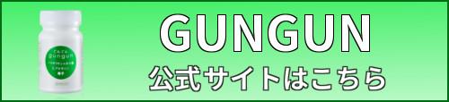 GUNGUN・ボタン