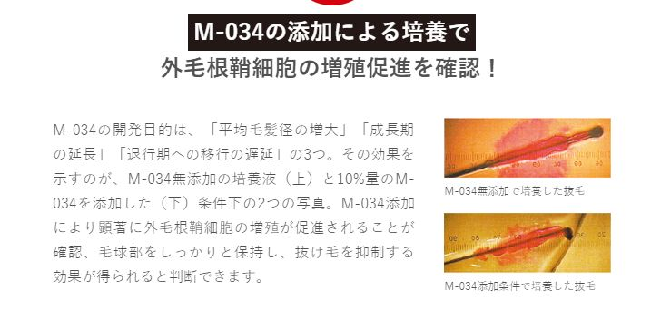 天真堂・M-034・説明