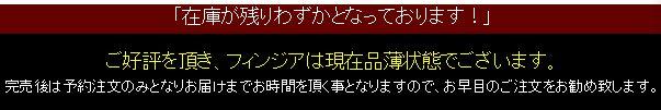 フィンジア・在庫01