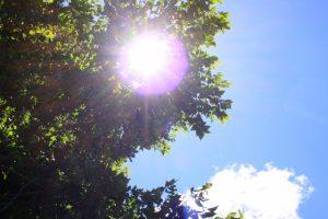 日差し・紫外線