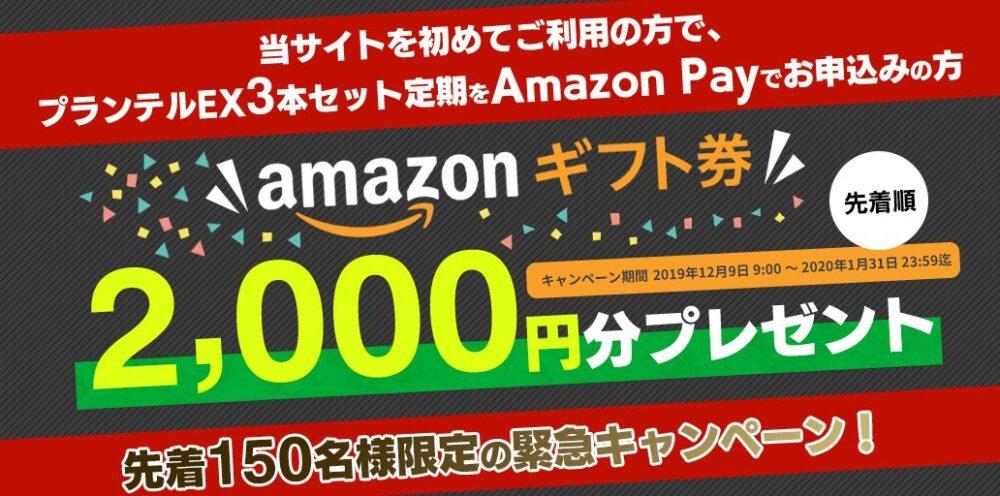 プランテルEX・Amazon Pay