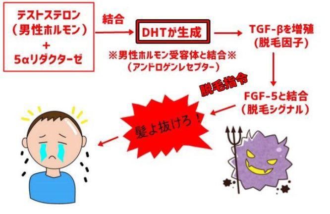 AGA組織図11