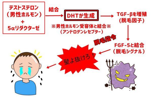 AGA組織図