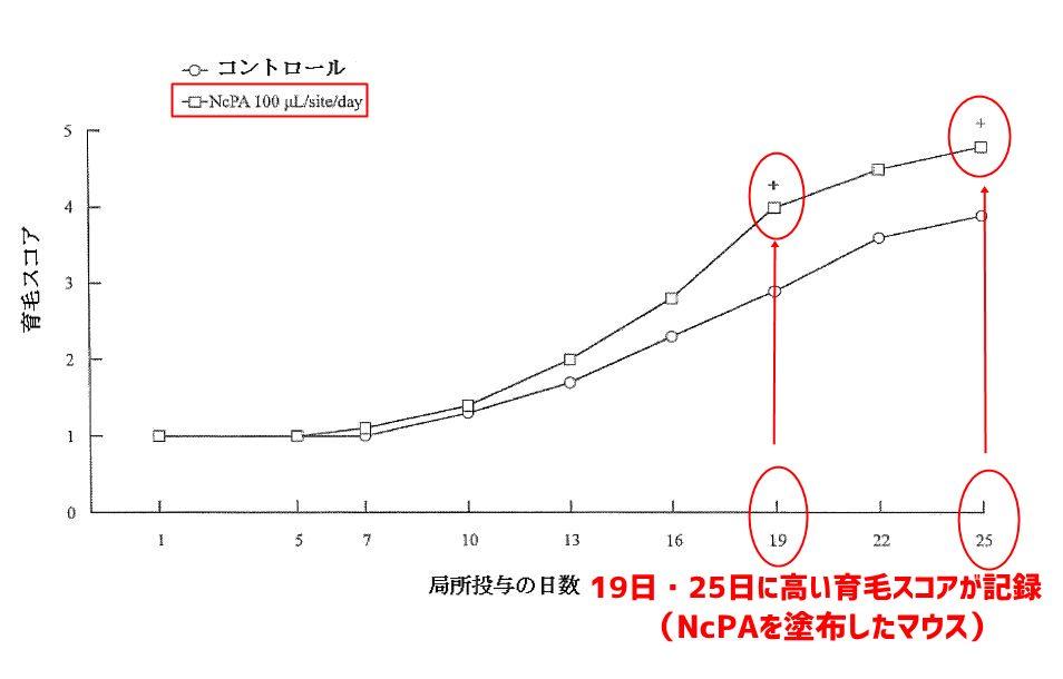 NcPA・マウス01