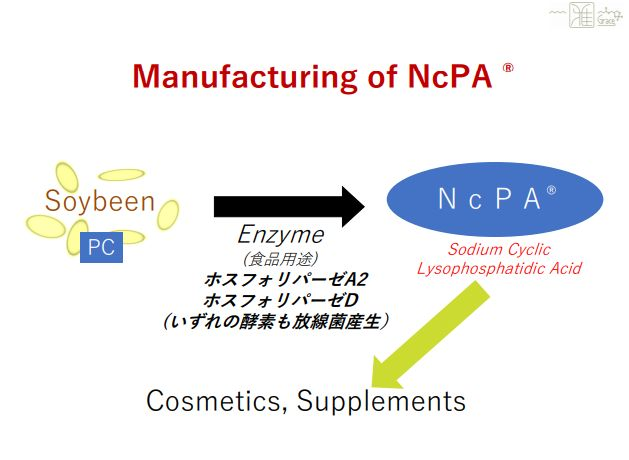 NcPA002