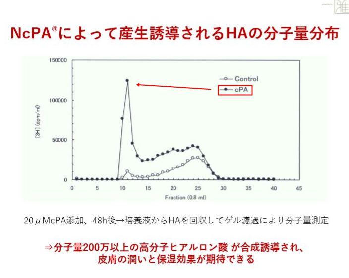 NcPA・ヒアルロン酸02