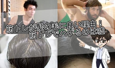 筋トレ・髪の毛に良い