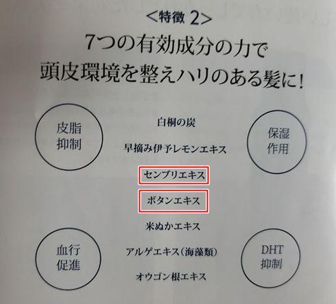 シンフォート・血行促進